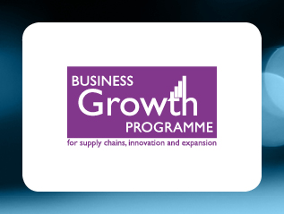 The Business Growth Programme